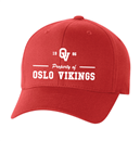 Oslo Vikings - Flexfit #21